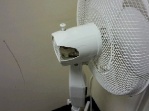 A damaged Fan in use at a college